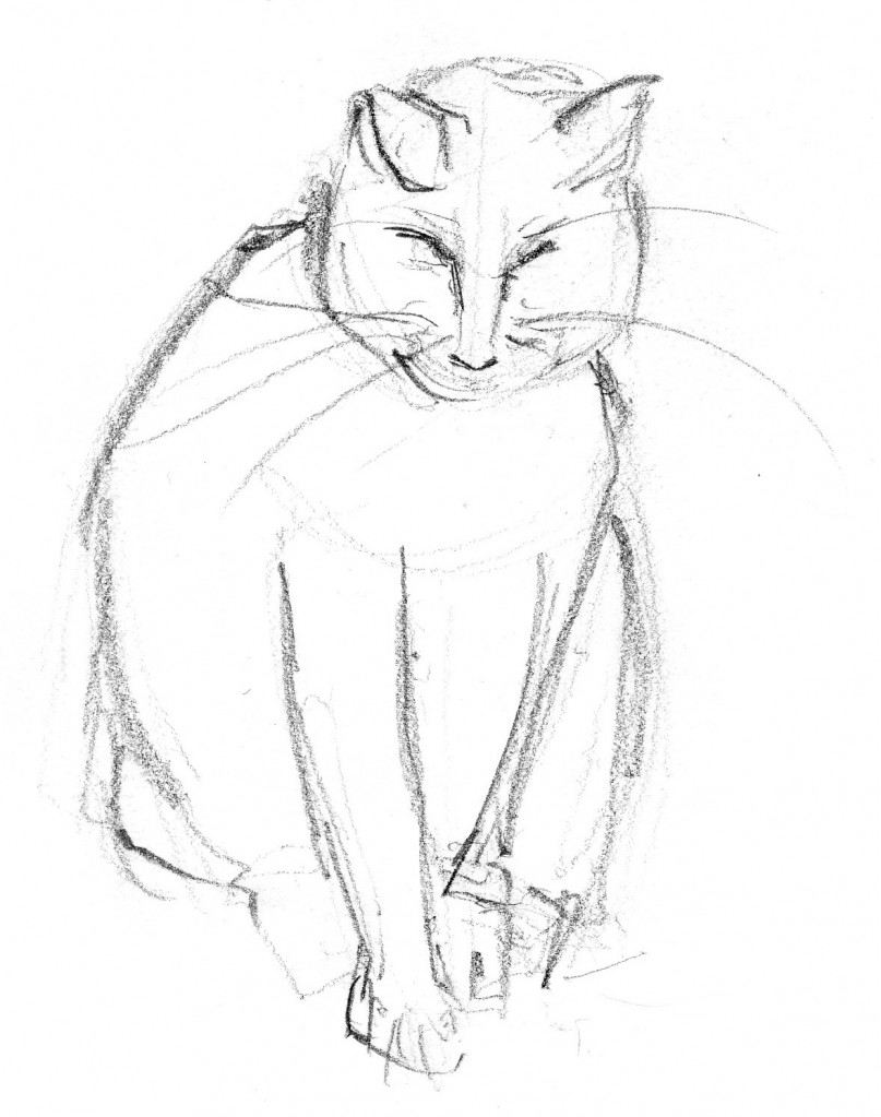 Patsy cat sketch