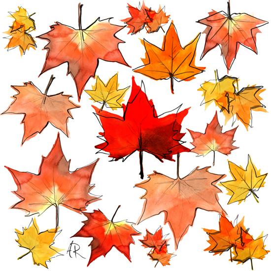 Autumn-leaves-illustration_Angie_Rehe