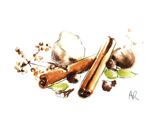 spices-watercolour-illustration
