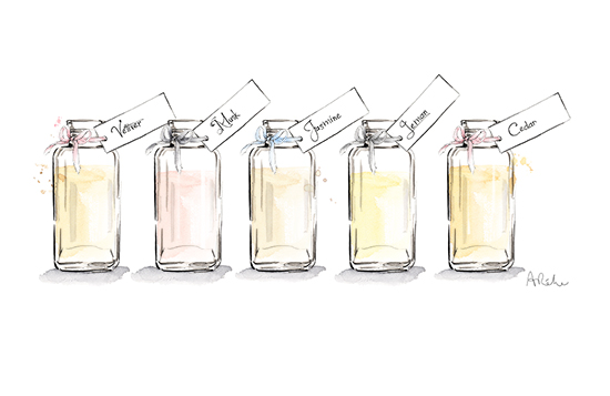 watercolour_bottles_illustration_angie_rehe
